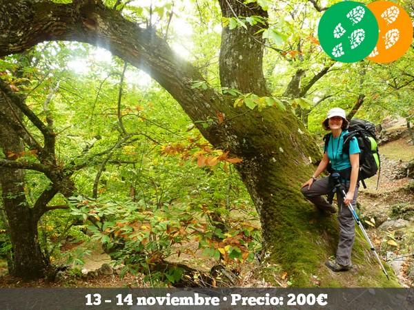 211113 - VALLES DEL JERTE Y AMBROZ
