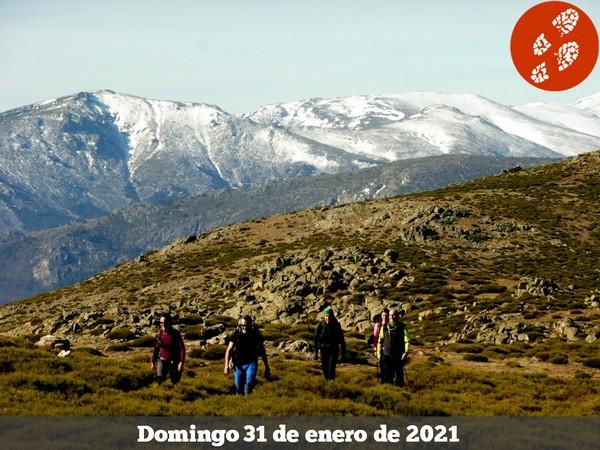 210131 - El Mondalindo